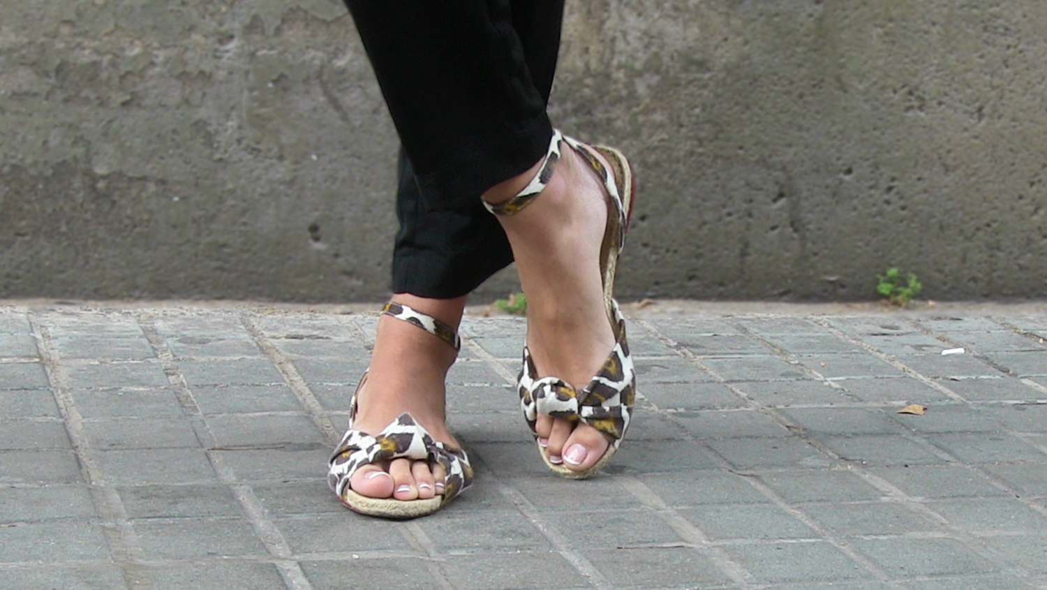 Charlotte_Olympia_Shoes